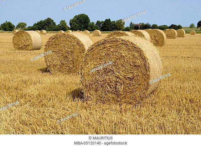 Germany, Lower Saxony, Friesland, Wangerland, Minsen, straw bales