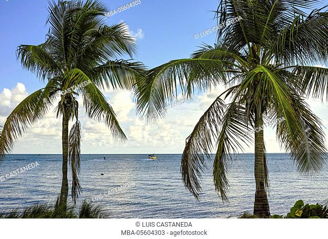 Biscayne Bay, Miami, Florida, USA