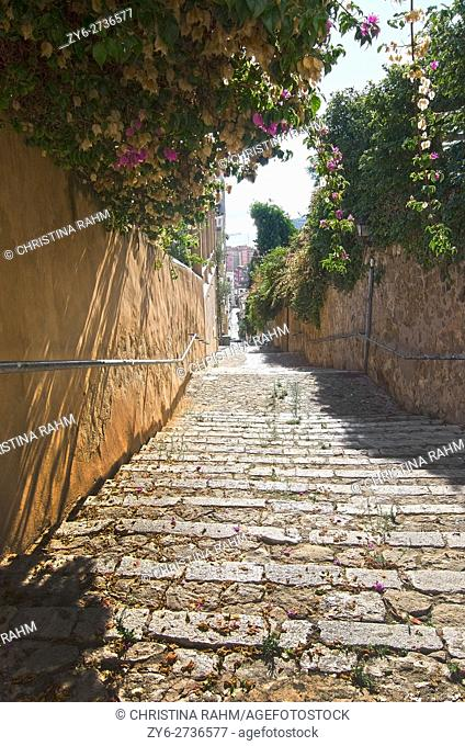 El Terreno staircase with bougainvillea flowers and Mediterranean glimpse on a sunny morning in Palma de Mallorca, Balearic islands, Spain