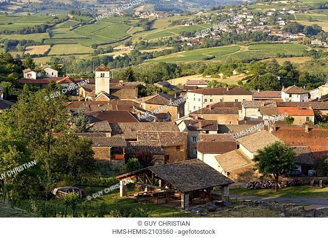 France, Saone et Loire, Berze la Ville, vineyard of Maconnais