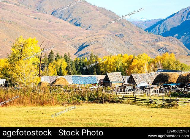 beautiful primitive villages on autumn morning, baihaba village in kanas scenic area, China