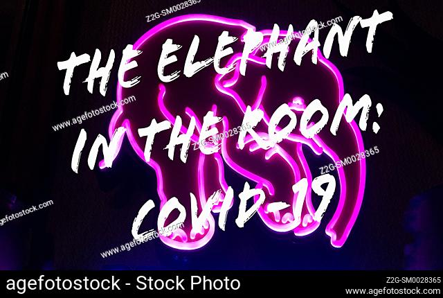 A play on the English idiomatic expression, the elephant in the room. A pictograph of a pink elephant and words overlay, Canada