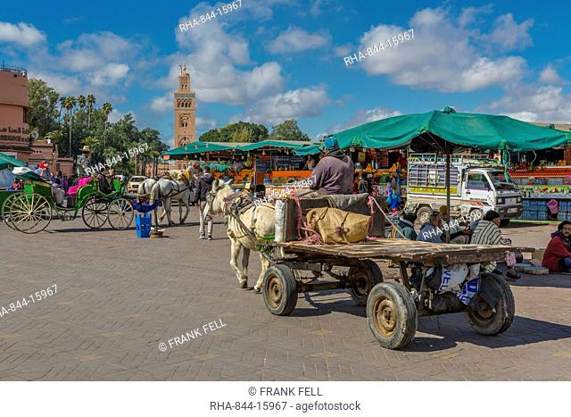 Horse and cart on Jemaa el Fna (Djemaa el Fnaa) Square, UNESCO World Heritage Site and Koutoubia Mosque visible, Marrakesh (Marrakech), Morocco, North Africa