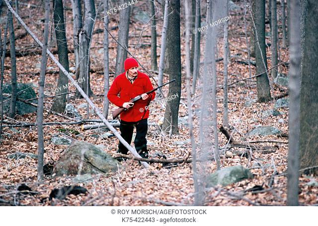 Big game hunting for bear or deer, USA