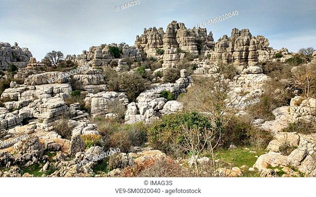 Lime terraces. Paraje Natural El Torcal de Antequera, Málaga province, Andalusia, Spain