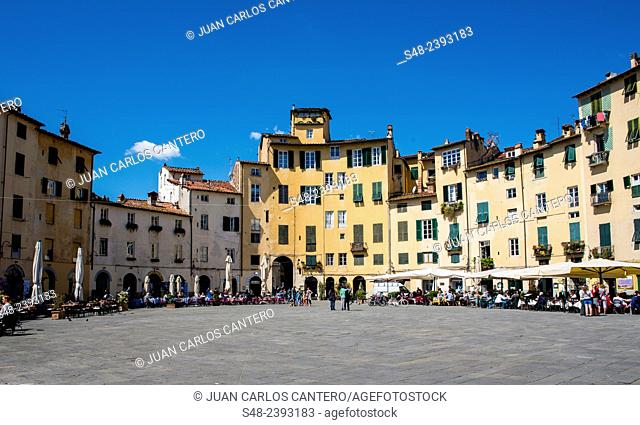 Piazza dell'Anfiteatro. Lucca. Tuscany. Italy