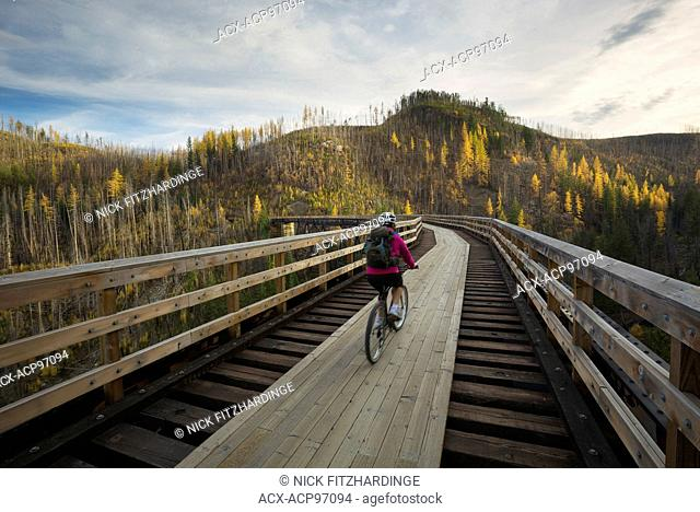 Biking over the trestles in myra canyon