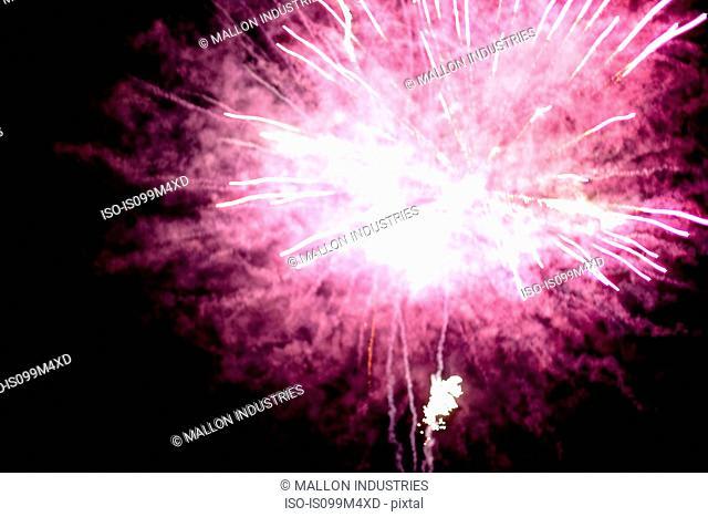 Pink firework explosion