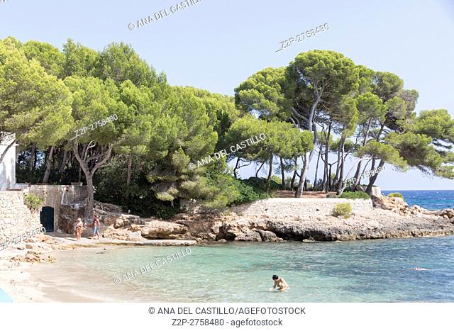 Coast in Majorca island Balearic islands on August 2016 in Spain