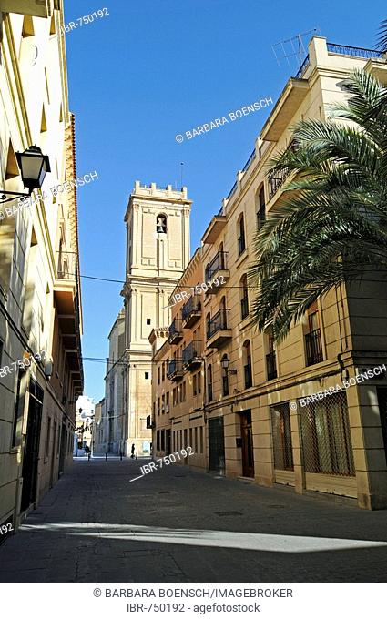 Santa Maria Basilica, Elche, Elx, Alicante, Costa Blanca, Spain