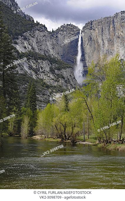 Yosemite valley at the swinging bridge