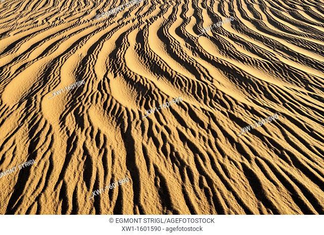 sand ripples, texture on a sand dunes nearTehenadou, Adrar n' Ahnet, Algeria, Sahara, North Africa