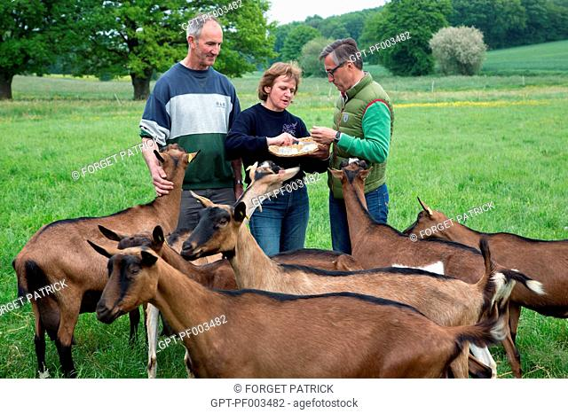 LAURENT CLEMENT, MICHELIN-STARRED CHEF OF THE COURS GABRIEL, AND YOLANDE AND JEAN-PIERRE MOREAU, GOAT FARMERS AND CHEESE-MAKERS