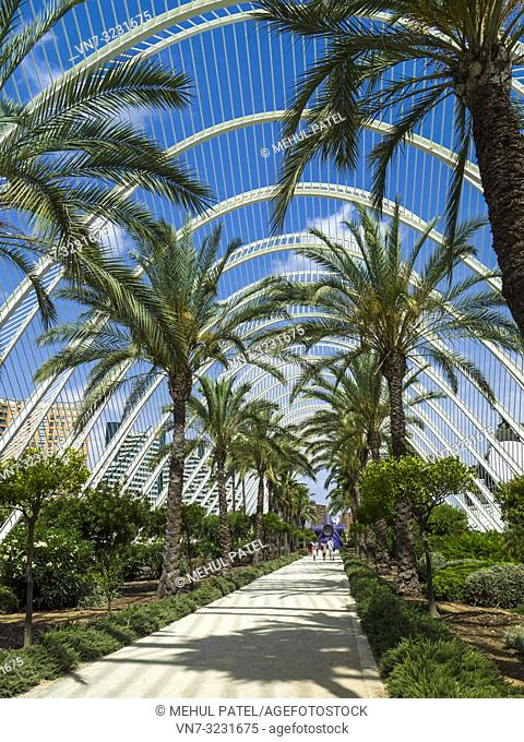 The Umbracle, open-air garden part of the City of Arts and Sciences complex, Valencia, Spain, Europe