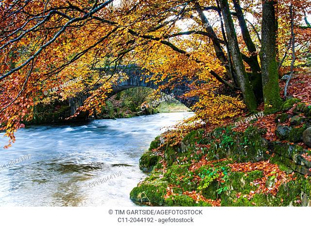Lake District; Cumbria; national park; England; UK