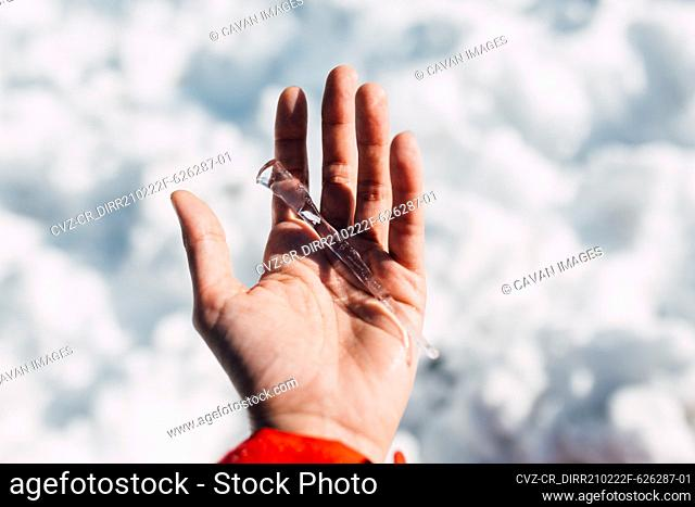 Female hand holding a large icicle
