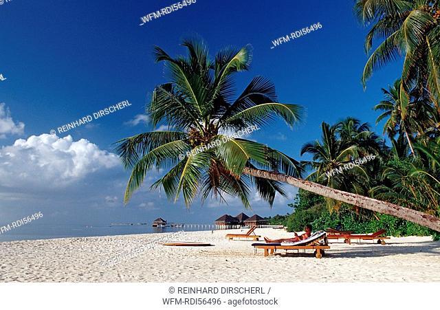 Beach on Maledivian Island, Indian Ocean, Medhufushi, Meemu Atoll, Maldives