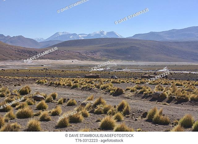 Steam coming from the El Tatio geysers, Atacama Desert, Chile