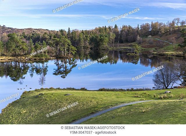 The Tarns, Tarn Hows near Coniston, Lake District National Park, Cumbria, England, United Kingdom, Europe