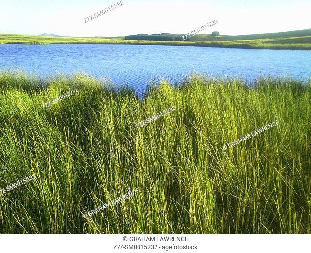 Mynydd epynt range, Powys, Wales, UK