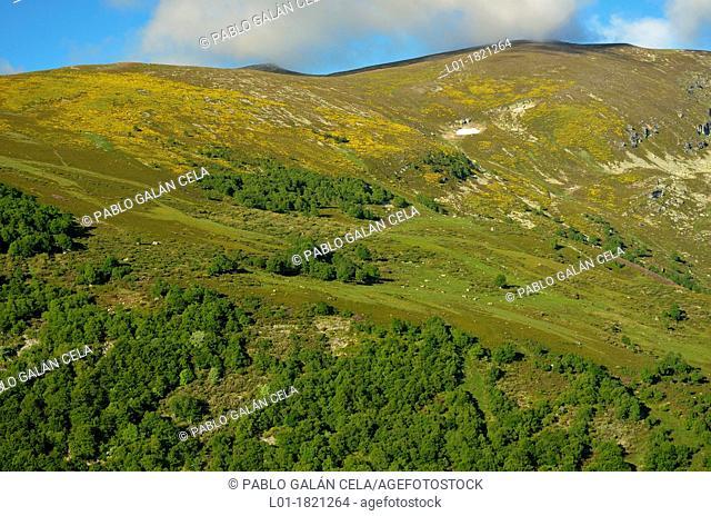 Alto Campóo Cantabria