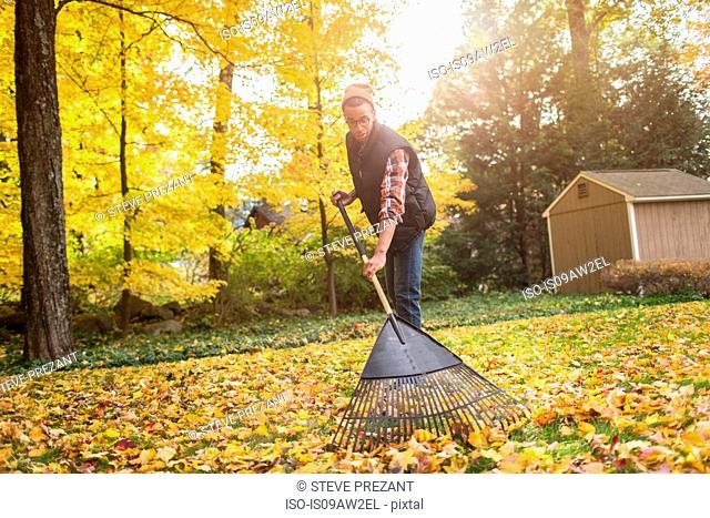 Man raking in autumn leaves garden