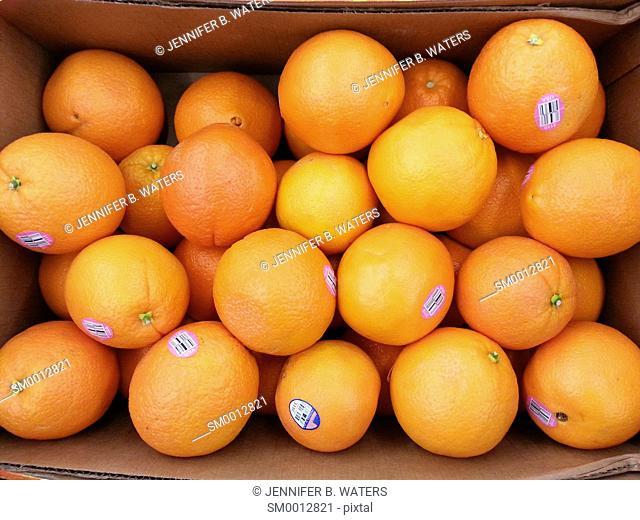 Cara Cara oranges for sale at the market