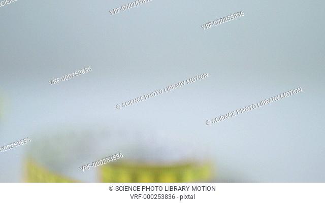 Tape measure against grey background, tilt down
