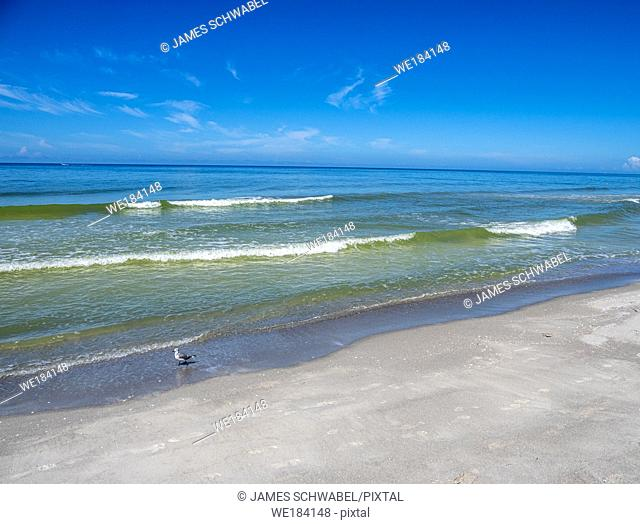 Gulf of Mexico beach on Longboat Key Florida