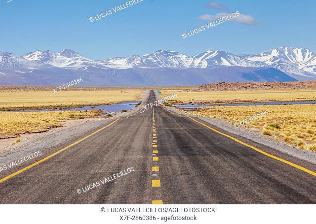 Altiplano, Puna, in background Andes Mountains, Road to Argentina by Paso Sico, near Socaire, Atacama desert. Region de Antofagasta. Chile