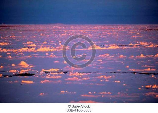 ANTARCTICA, WEDDELL SEA, PACK ICE IN MIDNIGHT SUNSHINE