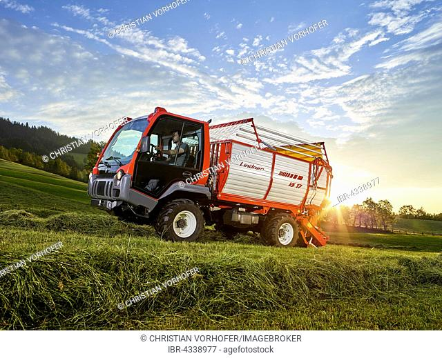 Unitrac transporter with forage trailer collecting the dried grass, Hopfgarten, Brixental, Tyrol, Austria