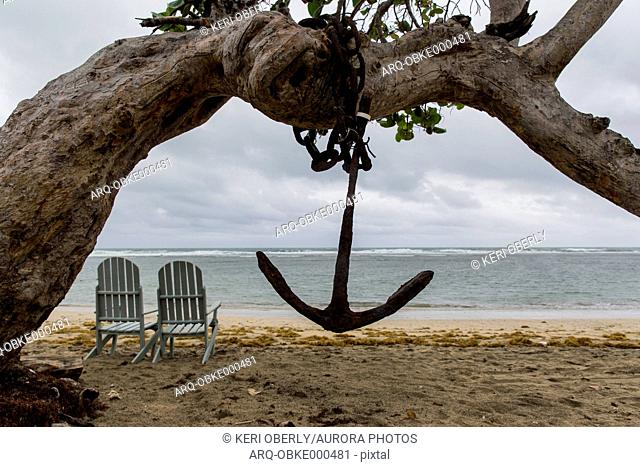 Anchor hanging on tree in front of two empty chairs standing on coastal beach, Cuba