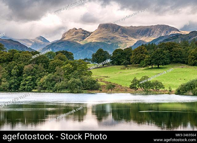 View of the Landale Pikes in the English Lake District seen from Loughrigg tarn. UK