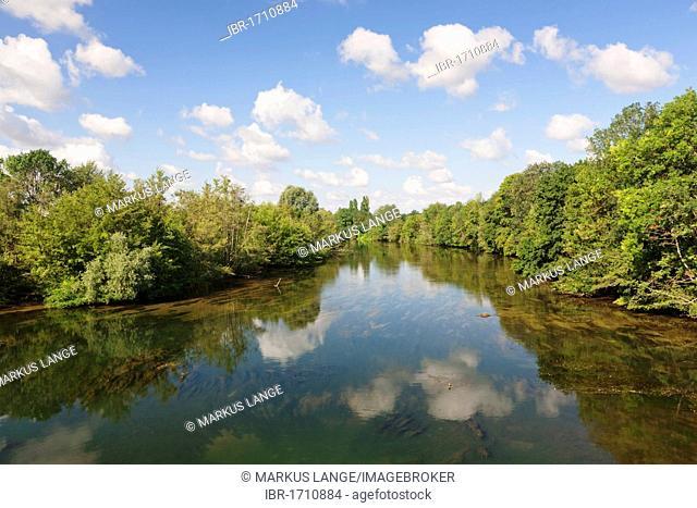 Loire near Orleans, Loiret, Loire Valley, France, Europe