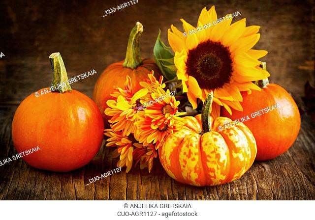 Autumn pumpkins, asters and sunflower