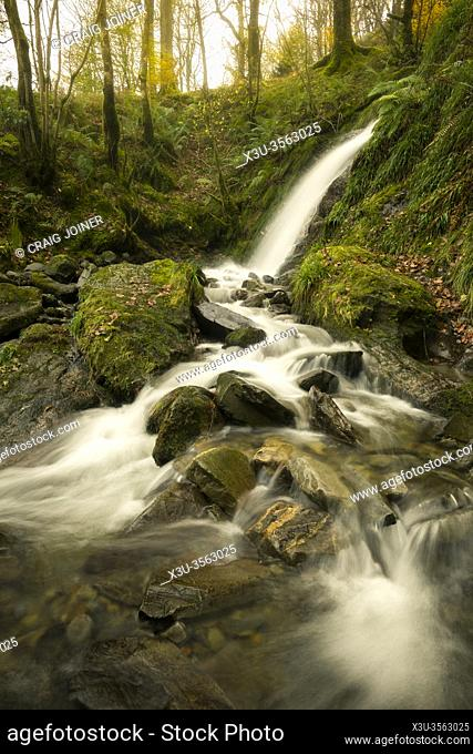 Holme Force in Holme Wood above Loweswater in the Lake District National Park, Cumbria, England