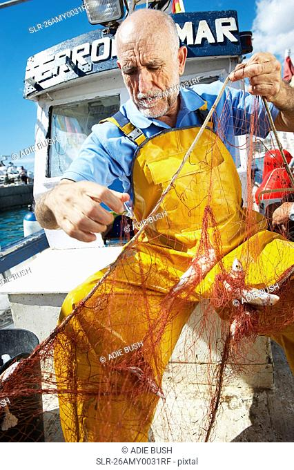Fisherman taking fish out of nets