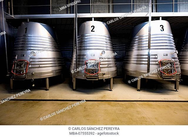 Production of wine in the winery Lagar de Proventus TR3SMANO producer of designation of origin wines Ribera del Duero in the province of Valladolid in Spain...