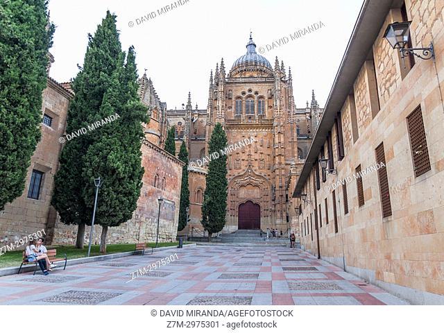 Catedral de Salamanca. Ciudad Patrimonio de la Humanidad. Castilla León. España