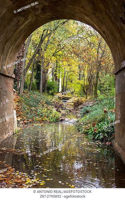 Rambla de los Molinos in autumn, Almansa, Albacete province, Castilla-La Mancha, Spain