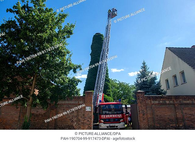 02 July 2019, Saxony-Anhalt, Libbesdorf: A ladder vehicle of the Aken fire brigade stands in a narrow driveway and extends the turntable ladder to a stork's...