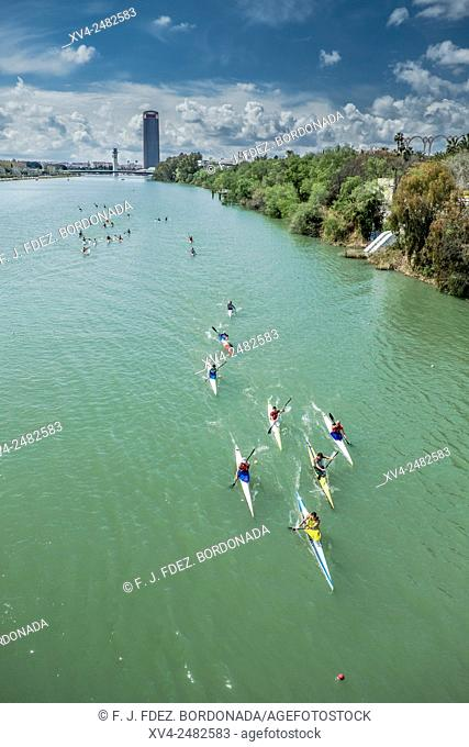 Kayakers race in Guadalquivir river, Seville, Andalusia, Spain