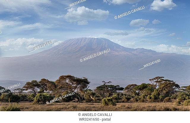 Mount Kilimanjaro, UNESCO World Heritage Site, seen from Amboseli National Park, Kenya, East Africa, Africa