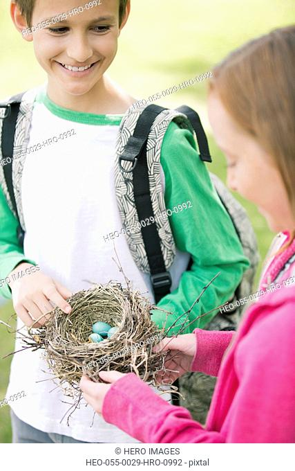 students examining a robins nest
