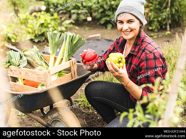 Smiling woman holding bell peppers in vegetable garden