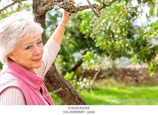 Portrait of senior woman in garden, holding tree branch