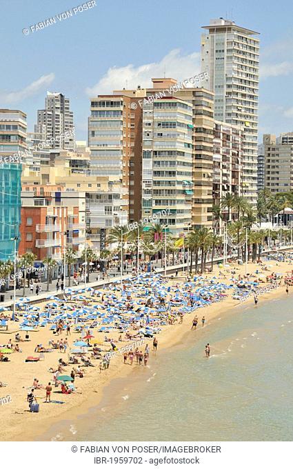 High-rise buildings on Playa Levante beach, Benidorm, Costa Blanca, Alicante, Spain, Europe