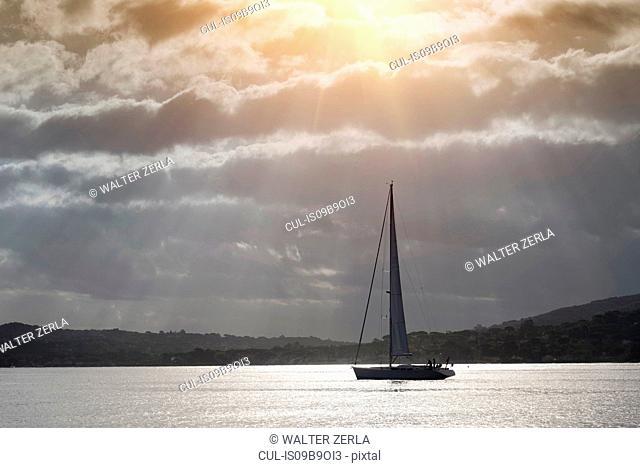Sailing boat on water, Saint-Tropez, Provence-Alpes-Cote d'Azur, France, Europe