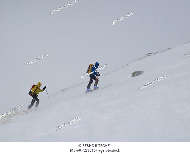 Mountaineers, ski tour to Mittlerer Guslarspitze Peak, Ötztal Alps, Tyrol, Austria